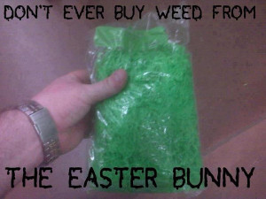 Easter Bunny Warning