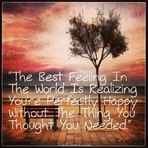 The best Feeling in the world is realizing you're perfectly happy ...