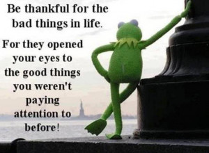 Kermit the Frog on Thankfulness
