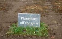 funny lawn mower jokes cutting it fine blodwen s lawn