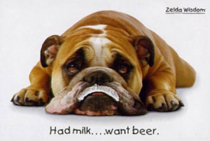 Funny Bulldog Pictures Quotes Cute funny bulldogs funny