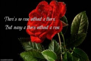There's no rose without a thorn, but many a thorn without a rose...