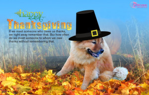 Happy Thanksgiving Day Quote With Dog Picture Wallpaper Forest View