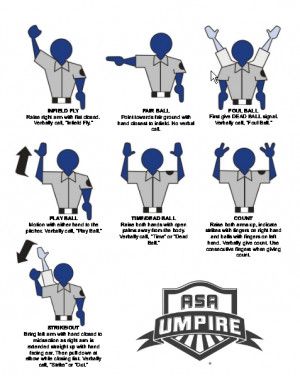 Umpire Signals Image Credited