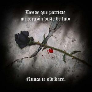 Desde que partiste mi corazón viste de luto, nunca te olvidaré.