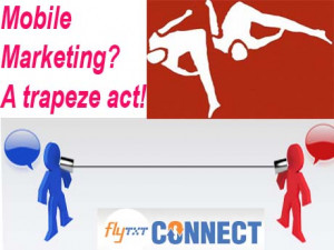 Mobile Marketing : Reality check from emerging economies