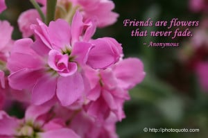 Flowers are friends that never fade. ~ Anonymous