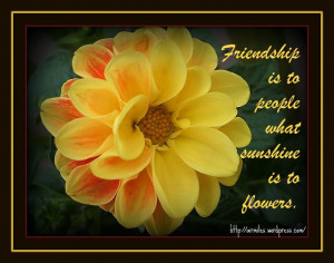 Flower Quotes For Friends Quotes about flowers and