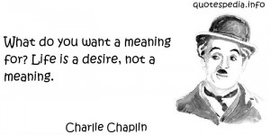 what do you want a meaning for life is a desire not a meaning