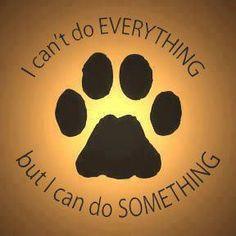 Foster Dog Quotes. QuotesGram
