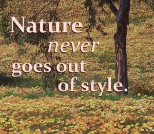 nature-quotes-and-sayings
