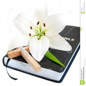 Easter Lily and Bible on a white background.