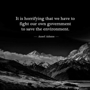 ... that we have to fight our own government to save the environment