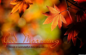 HD Have A Wonderful Day Quotes Wallpaper