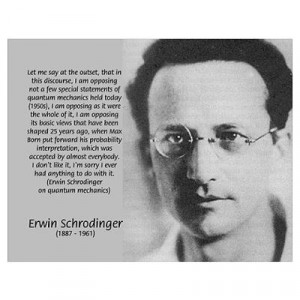 Erwin Schrodinger: Physics Poster