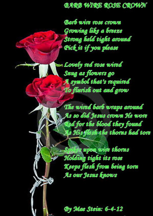 poems about roses a white rose rose poems rose poems rose of sorrows
