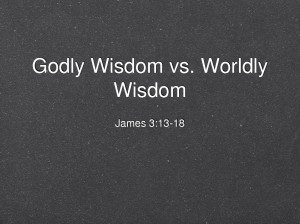 Godly Wisdom Godly wisdom vs.