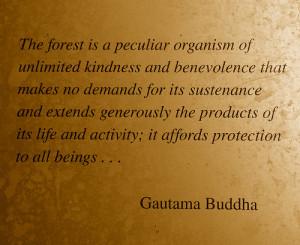 Tags: buddha , buddhist , Buddhist Quotes