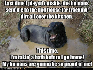 funny+Dog+pictures+with+quotes+(86).jpg