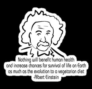 ShirtsGifts › Portfolio › Vegetarian Quote Albert Einstein