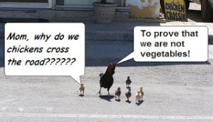 Funny Joke Life Quotes - Famous Why Did the Chicken Cross The Road?