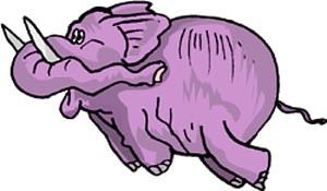 If large elephants have trunks, do small elephants have suitcases?