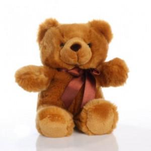 Teddy Bear (14)