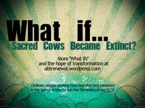sacred-cows_abtrenewal_wp_com