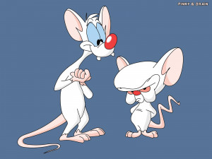 Pinky and the Brain and Tom and Jerry are now brands in Nigeria