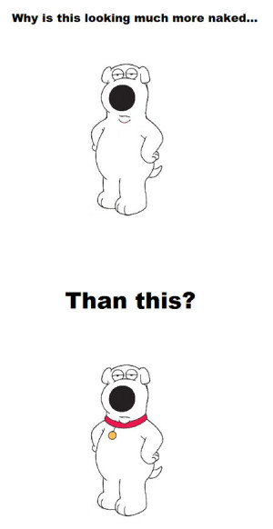 Funny photos funny Family Guy dog Brian collar