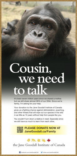... Jane Goodall Institute of Canada gives chimpanzees a fighting chance
