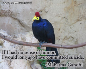 humor quotes humorous life quotes dry humor quotes best humor quotes ...