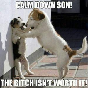 Calm down....