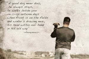 Sympathy For Dog Loss Poem