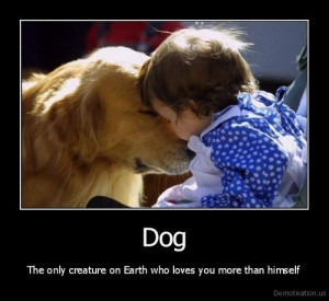 if you re pet owner you will know that your pets have special bond ...