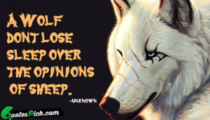 Wolf Dont Lose Sleep Quote by Unknown @ Quotespick.com