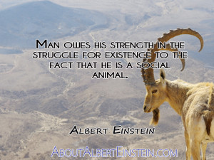 quotes about strength and struggle strength from her struggle quotes ...