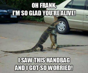 Thank you you did'nt end up a handbag!