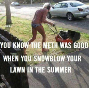 Funny Quotes About Meth Quotesgram