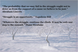 Struggle Quotes (18)