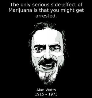 The only serious side-effect of marijuana is that you might get ...