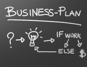 Business plan - financial and organziation plan