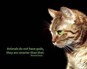 Animal Rights animal