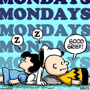 grief funny quotes quote charlie brown snoopy funny quote funny quotes ...
