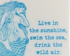 Sea Quote Coasters - Sea Horse, Mer maid, Sea Star & Scallop ...