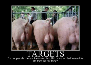 Targets For Our Pea Shooters At The County Fair