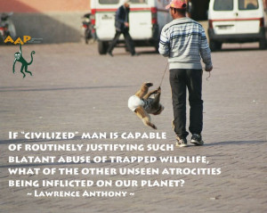 Don't accept animal abuse in the entertainment industry...
