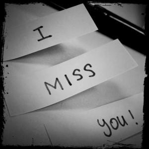 121005_20130626_192936_miss-you-i-miss-you-30515697-500-500.jpg