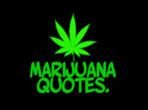 marijuana quotes marijuanaquotes tweets 111 following 207 followers ...