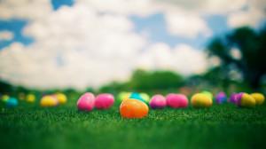 Easter Egg Hunt Backgrounds Background easter eggs